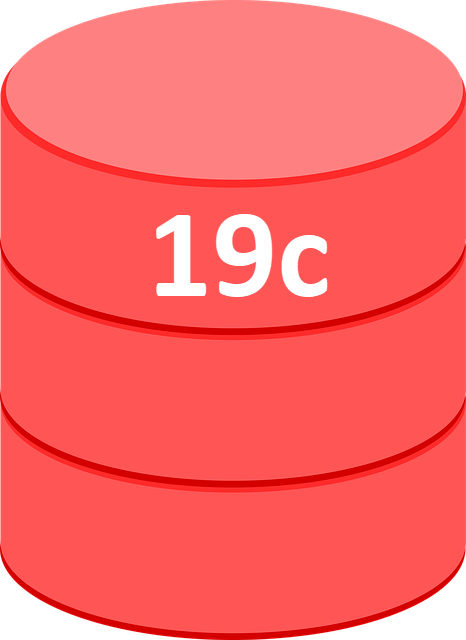 Oracle 19c Released : How does that make you feel? | The